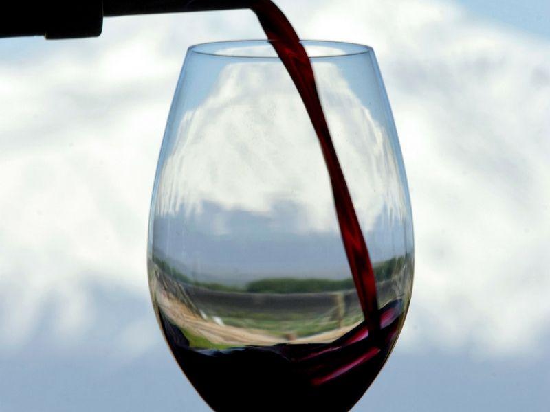 Mendoza es uno de los elegidos para saborear los mejores vinos.