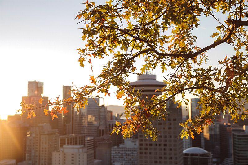 Un apacible atardecer en Vancouver.