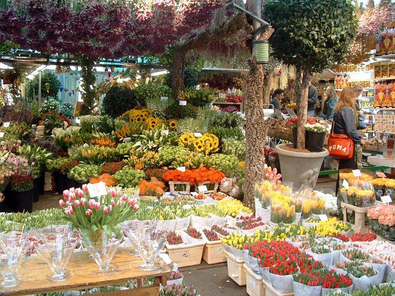 Los coloridos mercados