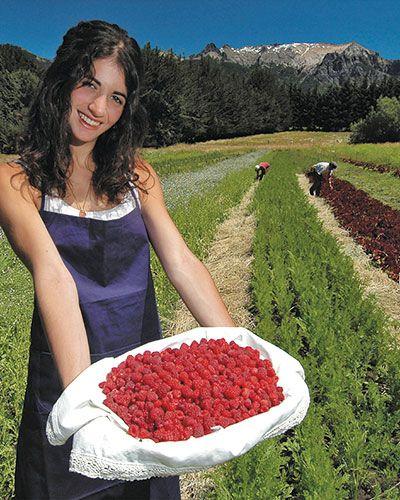 Los frutos rojos son la delicia de la gastronomía provincial.