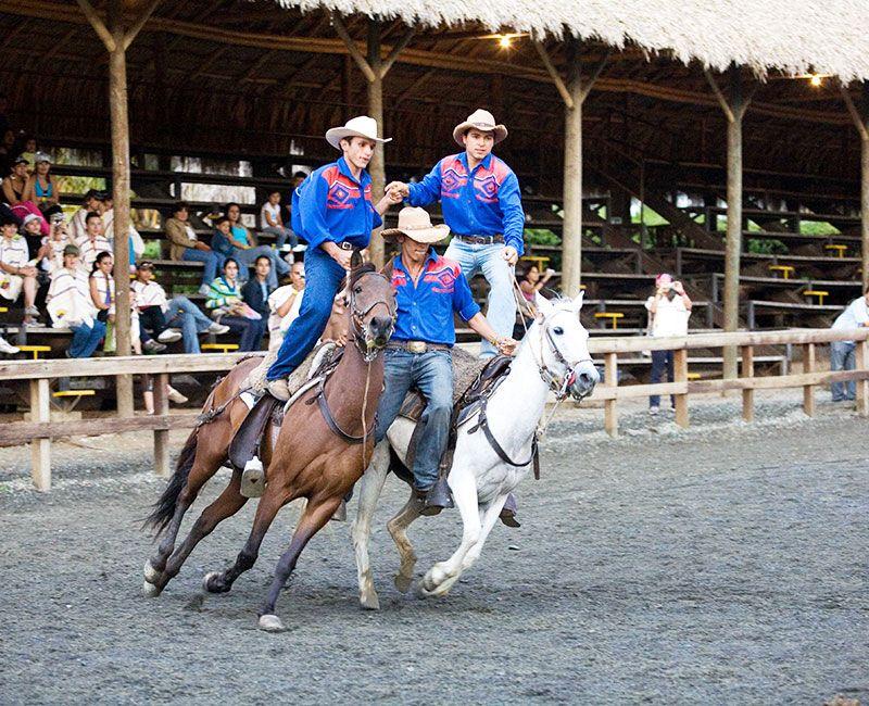 El espectáculo acrobático con caballos en Panaca es un atractivo único en Colombia.