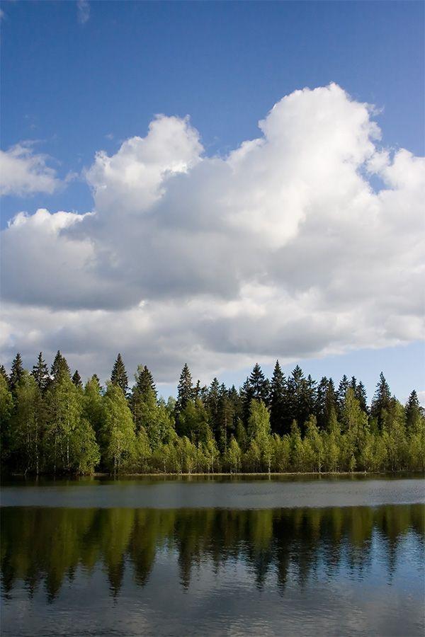 Finlandia y otro importante aniversario.