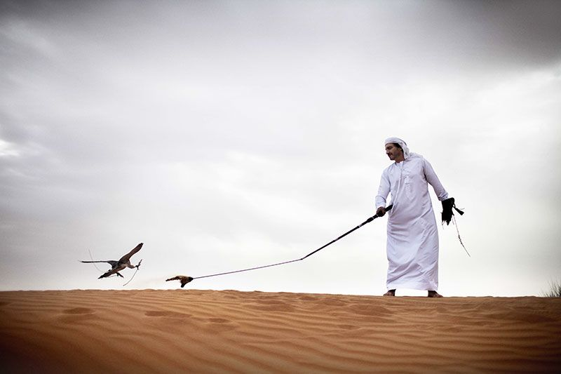 La cetrería es una tradición ancestral del desierto.