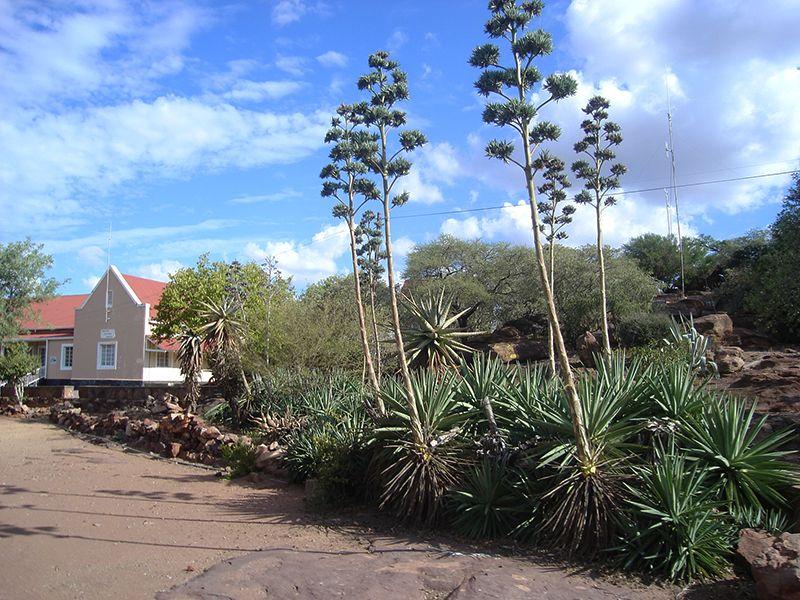 En septiembre Botsuana. El país africano celebra el 50° aniversario de su independencia.