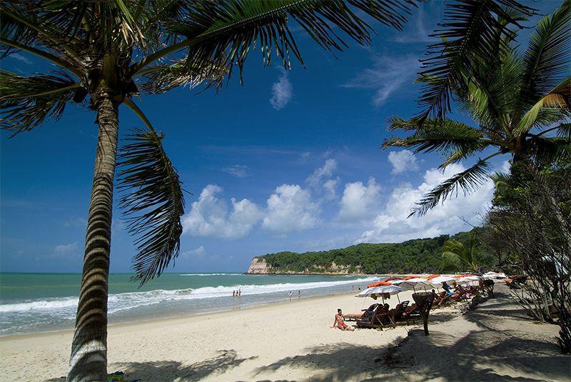 Pipa es otra de las increíbles playas de Brasil donde los delfines habitan en total libertad.
