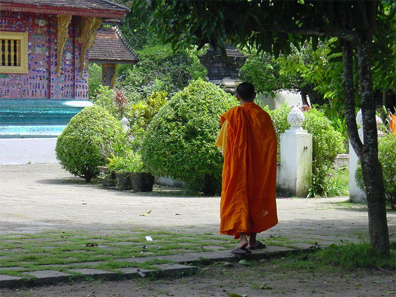 Los monjes budistas