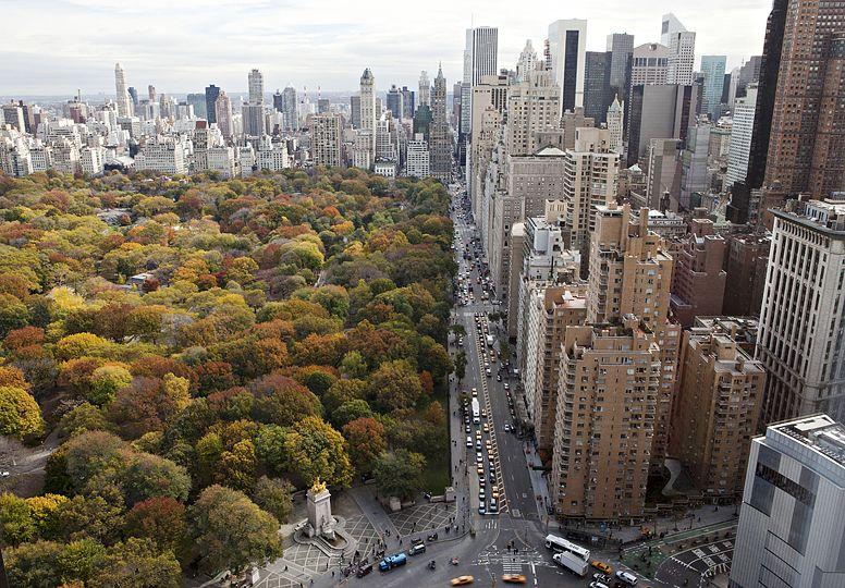 Una vista diferente del Central Park