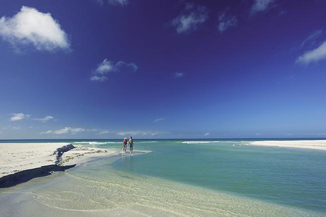Guía práctica para conocer Fort Myers & Sanibel