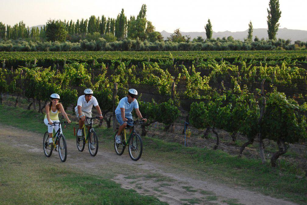 Quienes estén dispuestos a la aventura pueden recorrer en Mendoza distintas bodegas en bicicleta.(Foto: Ministerio de Turismo / Inprotur)