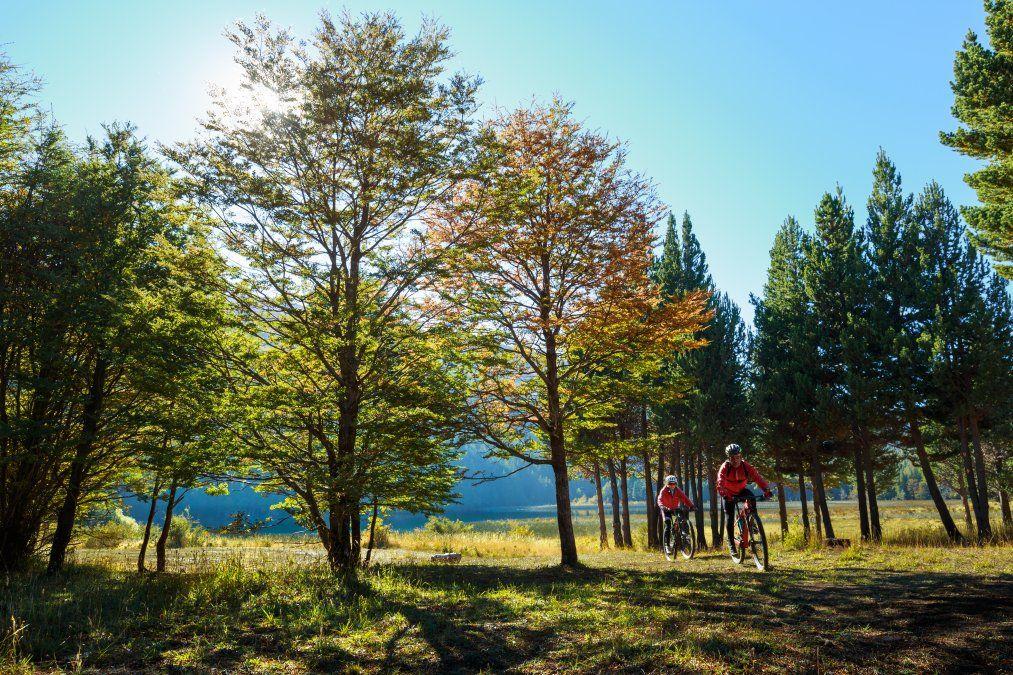 Por Coyhaique y Puerto Aysén se encuentran paisajes así.