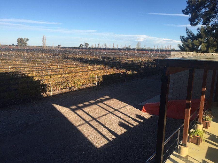 Bodega Bournett se distingue por sus vinos con tradición francesa.