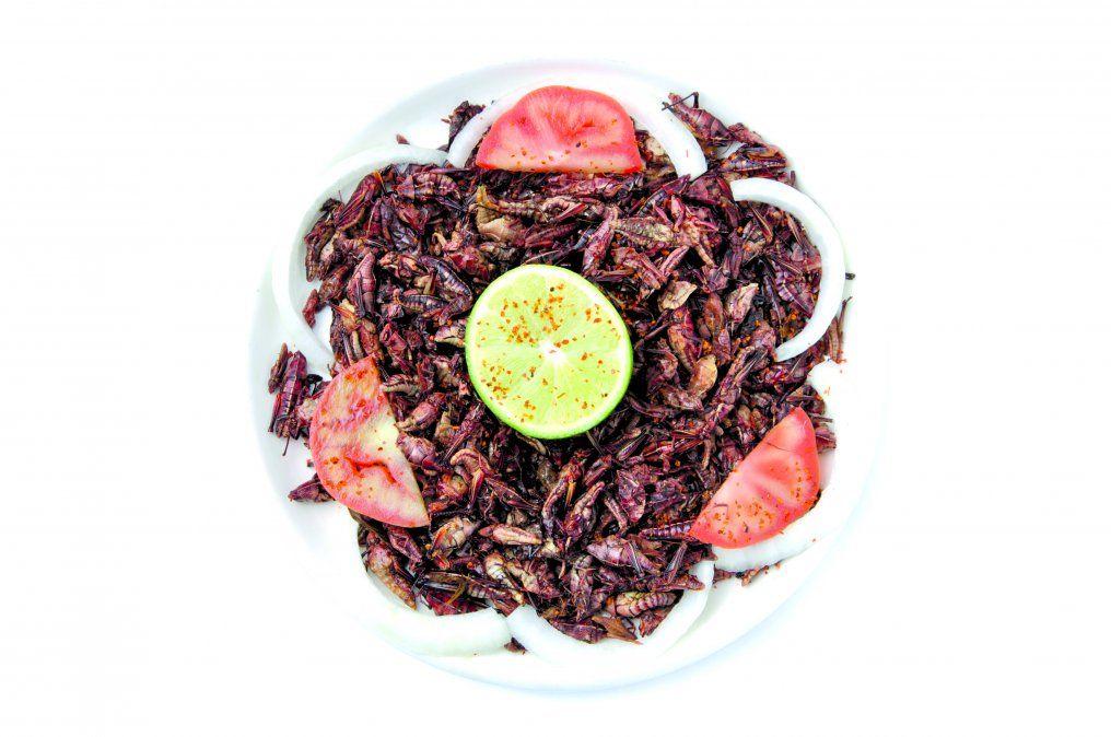 El Mercado de San Juan es el lugar para probar platos exóticos como insectos.