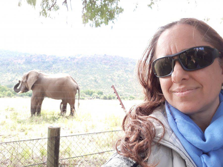 La presencia de los elefantes a pocos metros del lodge resulta fascinante.