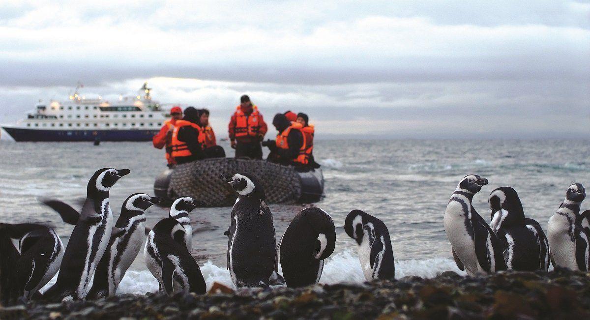 Desembarco en Zodiac para poder ver de cerca a los pingüinos.