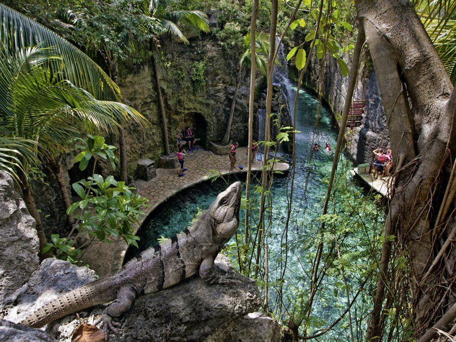 En la Riviera Maya