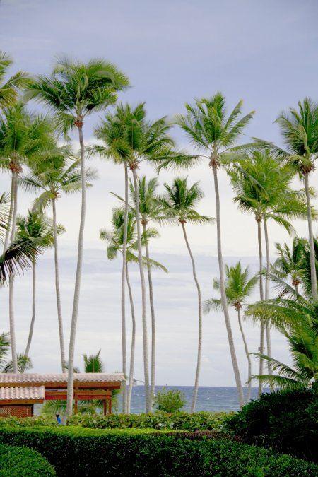 El paraje de Juan Dolio posee una playa de 10 km. de extensión.