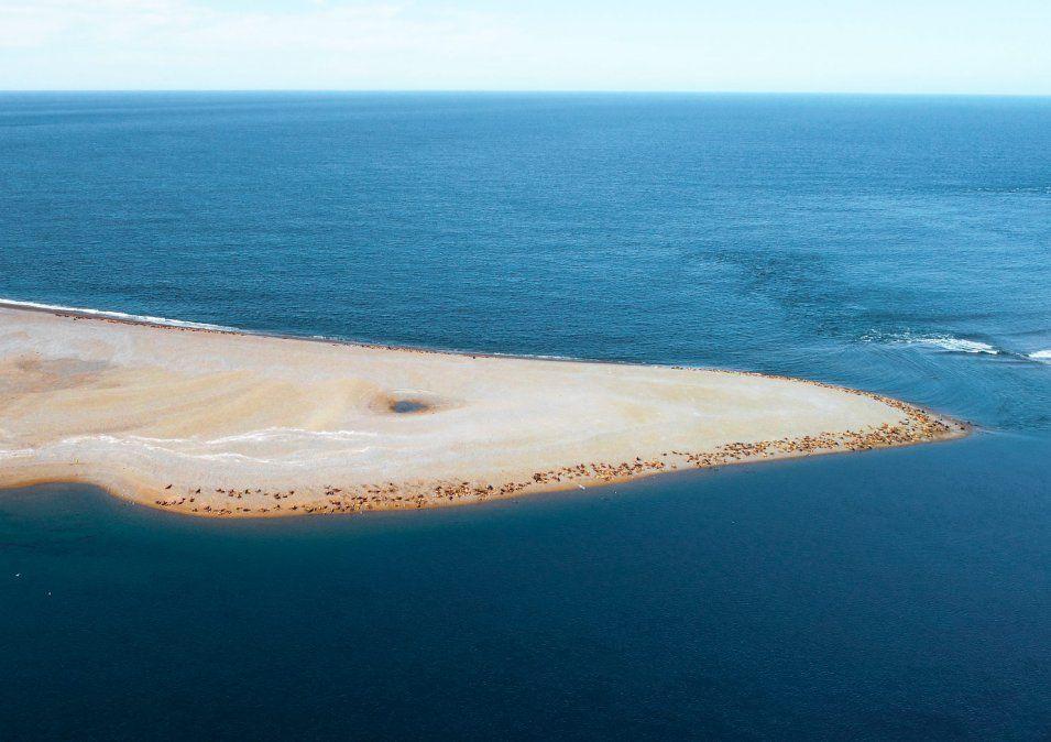 Península Valdés, al sur de Argentina, fue declarada Patrimonio de la Humanidad en 1999 por Unesco.
