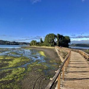 Achet adelanta detalles de su congreso anual y apuesta por el desarrollo de la industria en el archipiélago de Chiloé