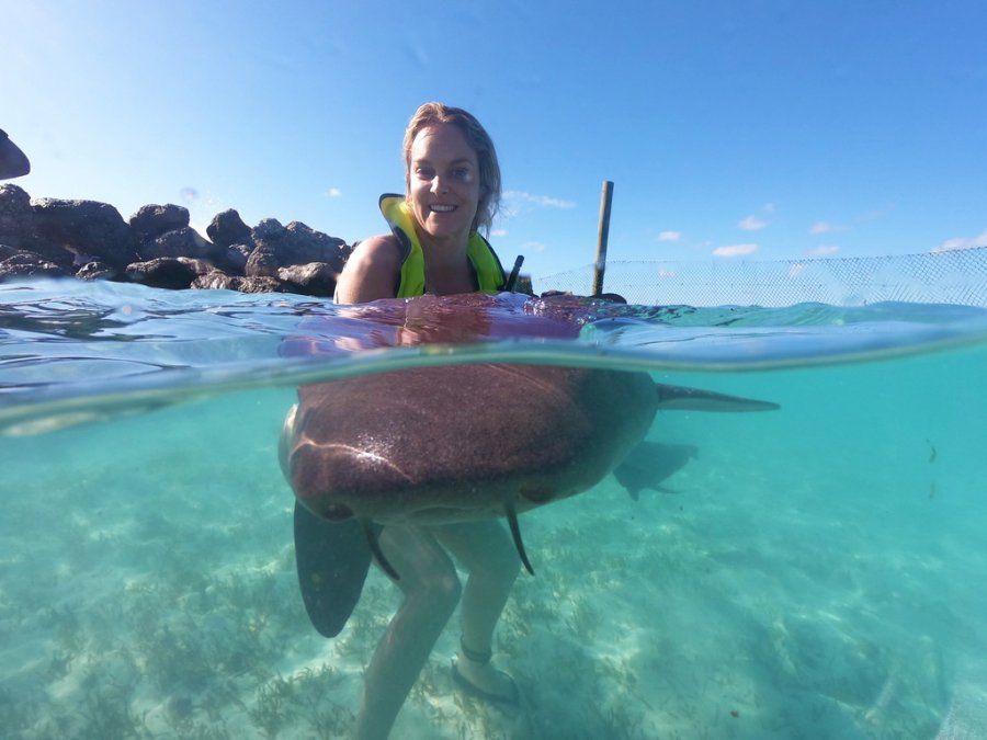 El encuentro con tiburones también forma parte de las propuestas de Blue Lagoon Island.