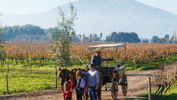 la gran fiesta del vino en las regiones vinateras de chile
