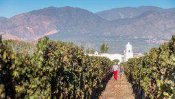 Los atractivos y servicios de la Ruta del Vino de Salta se detallan en esta capacitación.