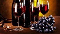 Dos potencias vitivinícolas, como Argentina y Chile. presentaron la ruta del vino de 1.300 km. de extensión.